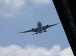 monosashithaiさんが、伊丹空港で撮影した全日空の航空フォト(写真)