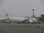 まさ773さんが、成田国際空港で撮影した日本航空 787-8 Dreamlinerの航空フォト(写真)