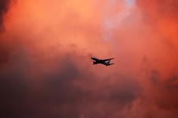 kix大好きカズチャマンさんが、伊丹空港で撮影した全日空 777-281/ERの航空フォト(写真)