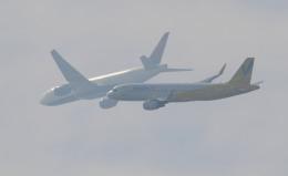 kenko.sさんが、成田国際空港で撮影したバニラエア A320の航空フォト(写真)
