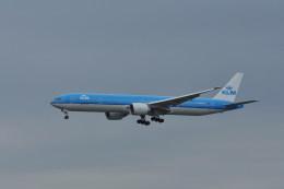 kumagorouさんが、成田国際空港で撮影したKLMオランダ航空 777-306/ERの航空フォト(写真)