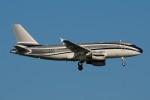 ぼんやりしまちゃんさんが、ブヌコボ国際空港で撮影したグローバル・ジェット・ルクセンブルク A319-115CJの航空フォト(写真)