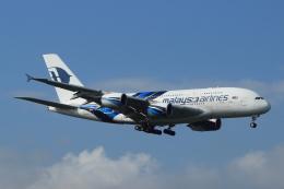 蒲田賢二さんが、成田国際空港で撮影したマレーシア航空 A380-841の航空フォト(写真)