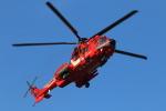 せぷてんばーさんが、東京ヘリポートで撮影した東京消防庁航空隊 EC225LP Super Puma Mk2+の航空フォト(写真)