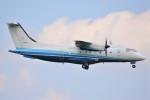 デルタおA330さんが、横田基地で撮影したアメリカ空軍 C-146A Wolfhoundの航空フォト(写真)