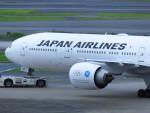 射命丸サンアークさんが、羽田空港で撮影した日本航空 777-346/ERの航空フォト(写真)