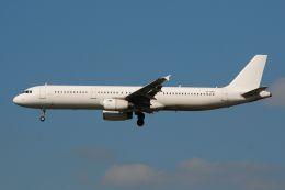 ぼんやりしまちゃんさんが、シェレメーチエヴォ国際空港で撮影したノードウィンド航空 A321-231の航空フォト(飛行機 写真・画像)