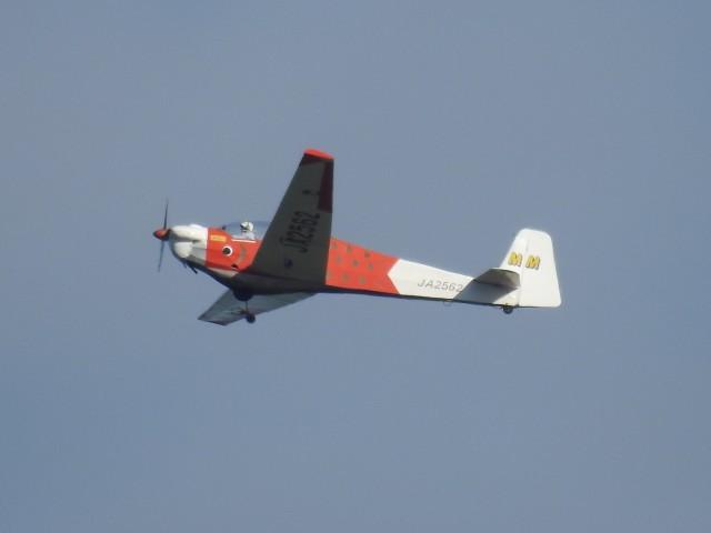 tetuさんが、札幌飛行場で撮影したエアロスポーツ・プロモーションズ SF-28A Tandem Falkeの航空フォト(飛行機 写真・画像)