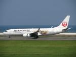N-OITAさんが、大分空港で撮影した日本航空 737-846の航空フォト(写真)