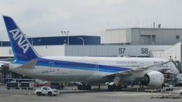 matt3さんが、シアトル タコマ国際空港で撮影した全日空 787-9の航空フォト(飛行機 写真・画像)