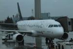 ちゅういちさんが、アタテュルク国際空港で撮影したターキッシュ・エアラインズ A320-232の航空フォト(写真)