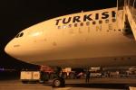 ちゅういちさんが、アタテュルク国際空港で撮影したターキッシュ・エアラインズ A330-203の航空フォト(写真)