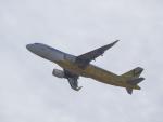 lonely-wolfさんが、関西国際空港で撮影したバニラエア A320-214の航空フォト(写真)