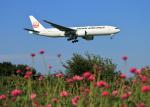 tuckerさんが、成田国際空港で撮影した日本航空 777-246/ERの航空フォト(写真)
