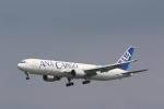 OS52さんが、成田国際空港で撮影した全日空 767-381Fの航空フォト(写真)