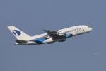 じゃりんこさんが、成田国際空港で撮影したマレーシア航空 A380-841の航空フォト(写真)