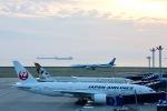 NoAさんが、中部国際空港で撮影した日本航空 777-246/ERの航空フォト(写真)