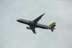 Fly Yokotayaさんが、香港国際空港で撮影したロイヤルブルネイ航空 A320-232の航空フォト(写真)