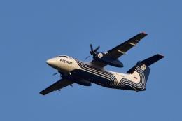 Take51さんが、新千歳空港で撮影したオーロラ DHC-8-200Q Dash 8の航空フォト(写真)