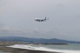 musashiさんが、高知空港で撮影した全日空 737-881の航空フォト(写真)
