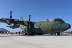 MuniLさんが、松島基地で撮影した航空自衛隊 C-130H Herculesの航空フォト(写真)
