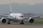 宮崎 育男さんが、福岡空港で撮影した全日空 787-8 Dreamlinerの航空フォト(写真)