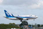 ポン太さんが、成田国際空港で撮影した全日空 737-781の航空フォト(写真)