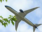 おっつんさんが、成田国際空港で撮影したベトナム航空 787-9の航空フォト(写真)
