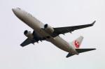 Tomo_ritoguriさんが、関西国際空港で撮影した日本航空 737-846の航空フォト(写真)