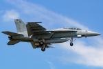 Ariesさんが、厚木飛行場で撮影したアメリカ海軍 F/A-18F Super Hornetの航空フォト(写真)