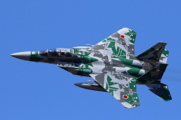 わかすぎさんが、小松空港で撮影した航空自衛隊 F-15DJ Eagleの航空フォト(写真)