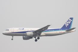 小牛田薫さんが、北京首都国際空港で撮影した全日空 A320-214の航空フォト(飛行機 写真・画像)