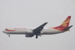 小牛田薫さんが、北京首都国際空港で撮影した大新華航空 737-84Pの航空フォト(写真)