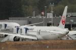 SAMBAR_LOVEさんが、ペインフィールド空港で撮影した日本航空 787-8 Dreamlinerの航空フォト(写真)