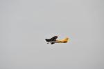 ja0hleさんが、名古屋飛行場で撮影した日本個人所有 172G Ramの航空フォト(写真)