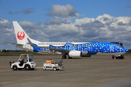 新千歳空港 - New Chitose Airport [CTS/RJCC]で撮影された日本トランスオーシャン航空 - Japan Transocean Air [NU/JTA]の航空機写真