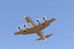 masannoriさんが、厚木飛行場で撮影した海上自衛隊 UP-3Cの航空フォト(写真)