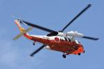 はっくさんが、館山航空基地で撮影した海上自衛隊 UH-60Jの航空フォト(写真)