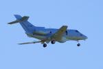 yabyanさんが、岐阜基地で撮影した航空自衛隊 U-125A (BAe-125-800SM)の航空フォト(飛行機 写真・画像)