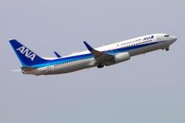 Tomo_mczさんが、伊丹空港で撮影した全日空 737-881の航空フォト(飛行機 写真・画像)