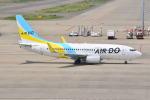 md11jbirdさんが、中部国際空港で撮影したAIR DO 737-781の航空フォト(写真)