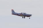 yabyanさんが、岐阜基地で撮影した航空自衛隊 T-7の航空フォト(飛行機 写真・画像)