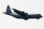 A350XWB-HNDさんが、横田基地で撮影したアメリカ空軍 C-130J-30 Herculesの航空フォト(写真)