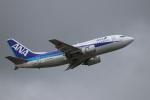 MuniLさんが、仙台空港で撮影したANAウイングス 737-54Kの航空フォト(写真)