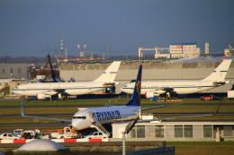 ちゅういちさんが、ブリュッセル国際空港で撮影したベルギー空軍 A310-222の航空フォト(飛行機 写真・画像)