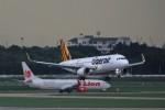 トールさんが、ドンムアン空港で撮影したタイガーエア 台湾 A320-232の航空フォト(写真)