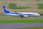 PASSENGERさんが、福島空港で撮影した全日空 737-881の航空フォト(写真)