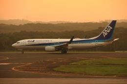wingace752さんが、釧路空港で撮影した全日空 737-881の航空フォト(写真)