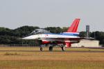 yabyanさんが、岐阜基地で撮影した航空自衛隊 F-2Bの航空フォト(写真)