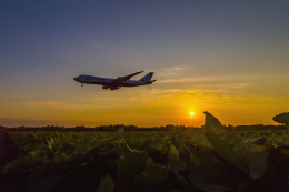 mameshibaさんが、成田国際空港で撮影した日本貨物航空 747-8KZF/SCDの航空フォト(写真)